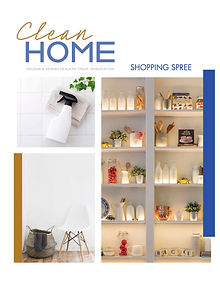 24x18_cleanHome_Poster copy.jpg