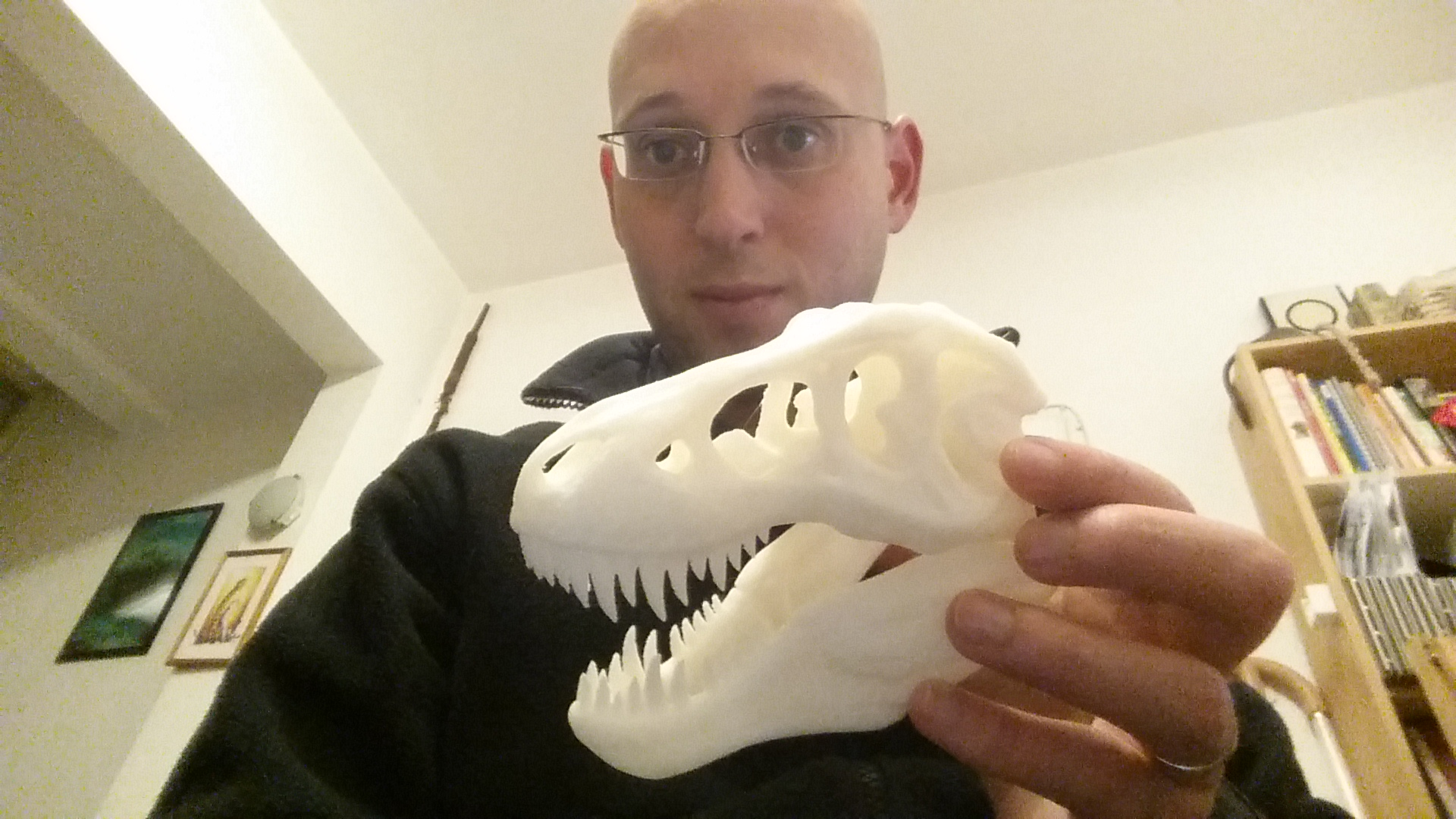 A printed t-rex skull for school