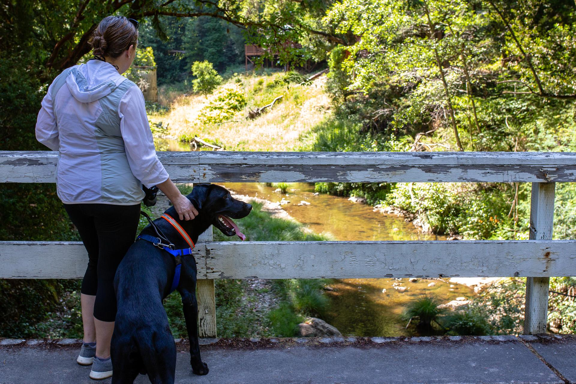 Boulder Creek, Irwin Way Bridge