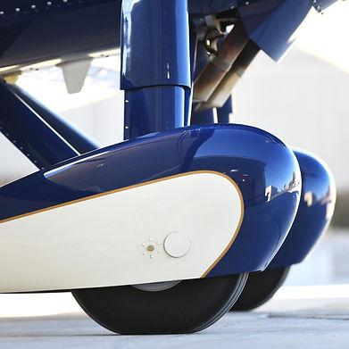 Oleo Strut Landing Gear