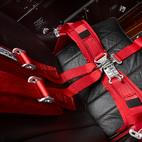 Custom Leather Interior - WACO YMF-5