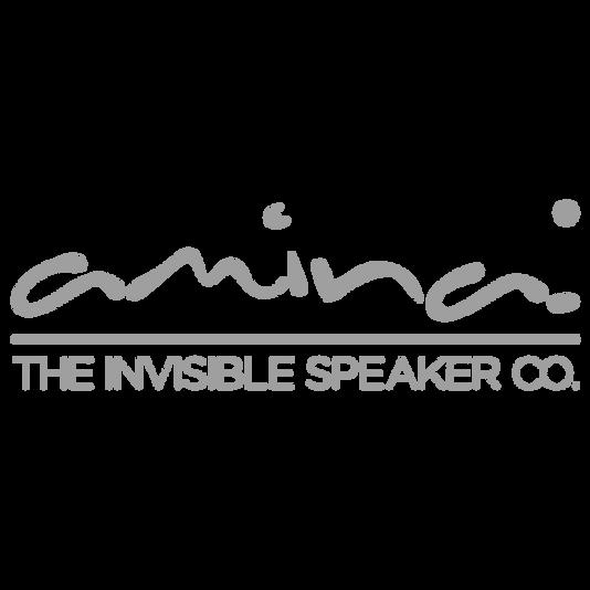 Amina_in_Miami_Speaker.png