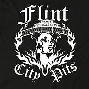 FlintCityPits-Newlogo.jpeg