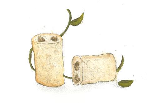 Loofa, seeds