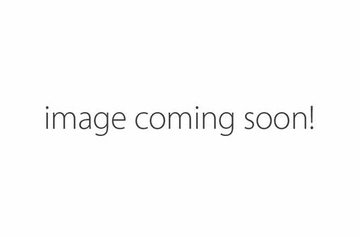 image coming soon.webp
