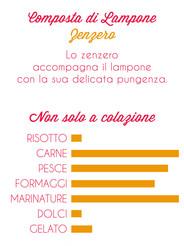 Composta Lamponi & Zenzero info.jpg