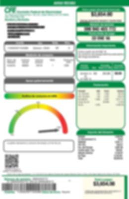 Describe las cantidades que se muestran en tu recibo de luz, y llena el formulario.