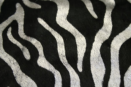 Black and Silver Zebra Print h_h.JPG