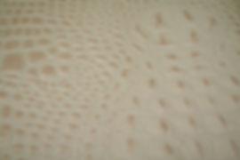 Bone Croc Hide.JPG