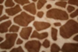 Giraffe Print h_h.JPG