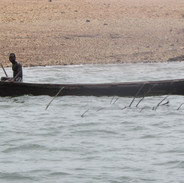Rescue June 2014 039.JPG