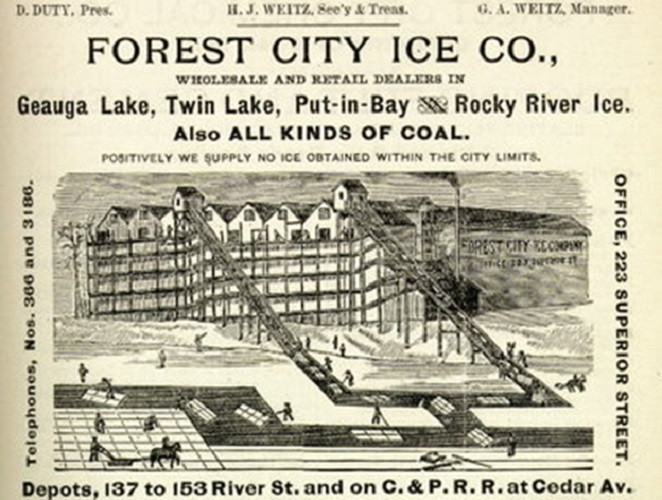 Forest CIty Ice Advertisement