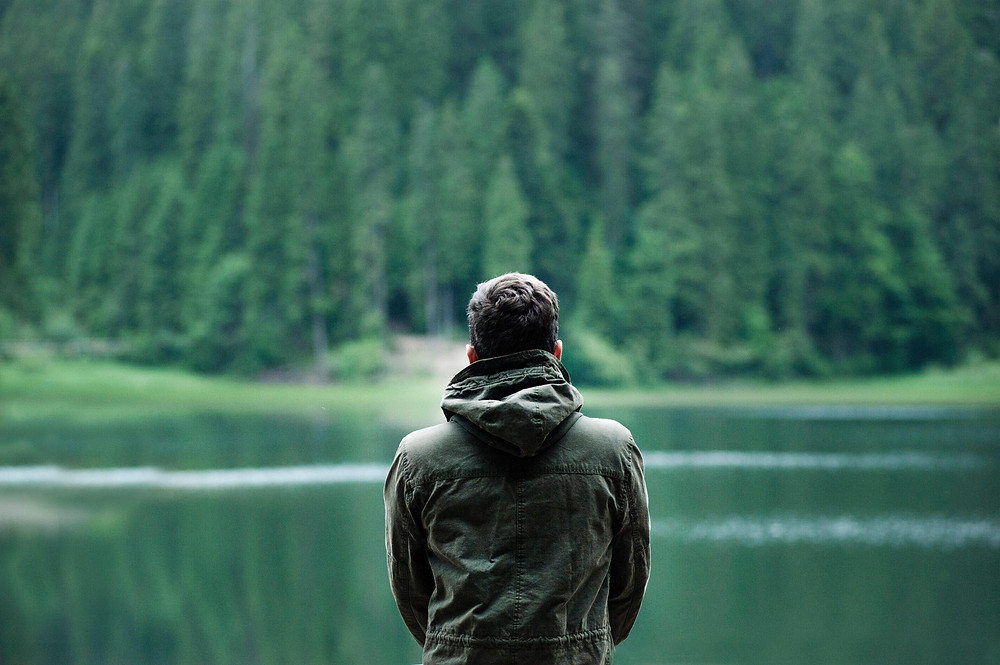 A person standing in front of a lake, facing the vast forest beyond the lake