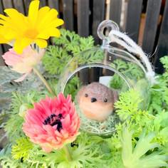 羊毛小鳥とガラスドーム