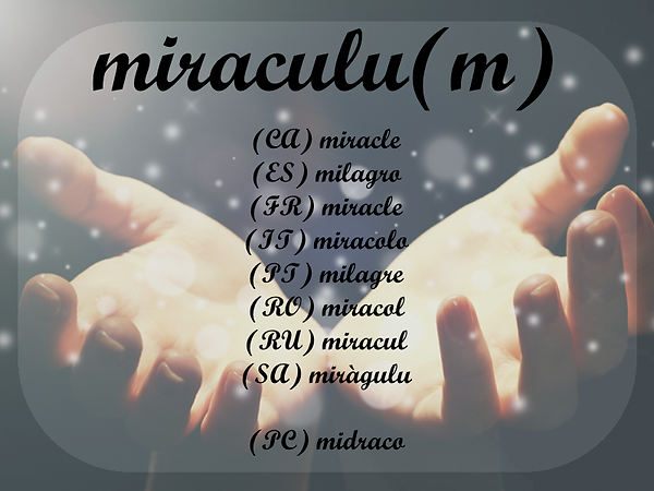 midraco.png