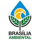 Brasília-Ambiental.jpg