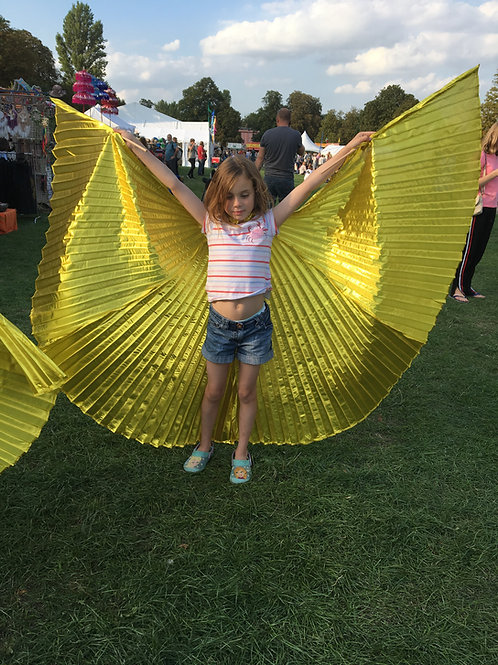 Kids Angel Wings