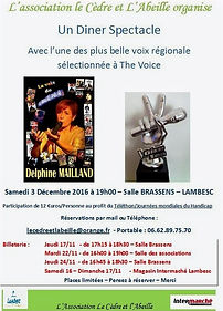 Affiche%2520Diner%2520spectacle%25202016