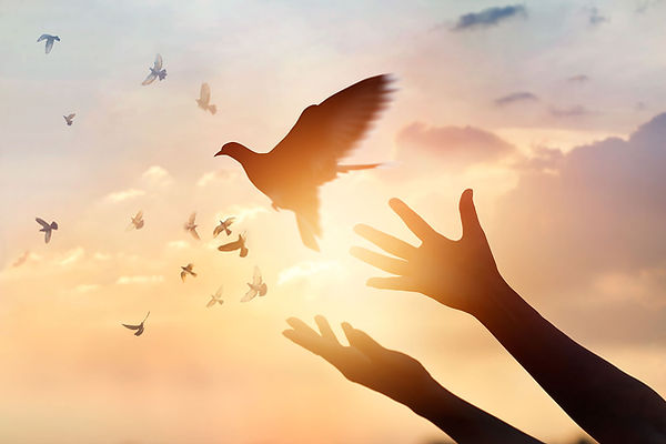 paix espérance