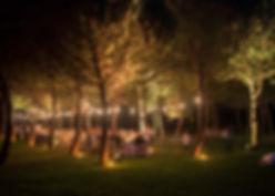 eventi-vari-2014-ok_145-1100x733.jpg