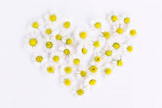 heart of daises