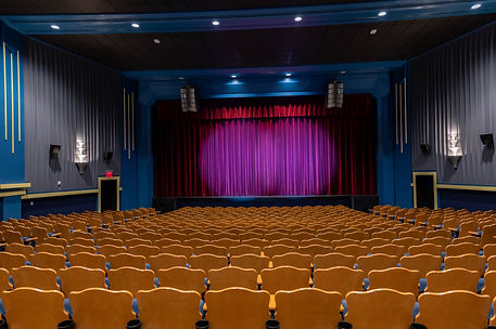 2021 Isis Theatre Interior Auditorium Low-254 - Copy.jpg