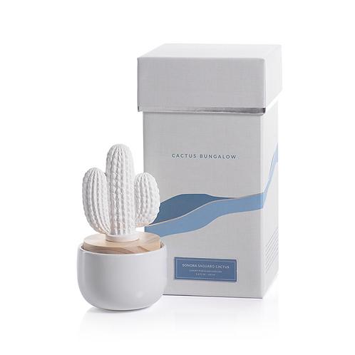 amuse l Shoppeamuse l Zodax Cactus Diffuer Sonora Saguaro