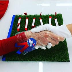 StarEyes Affirmation Hand Shake