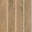 Thumbnail: HF965031-HF965034 White Birch