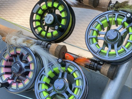 Fly Lines and Leaders for Clear Water Bass Fishing