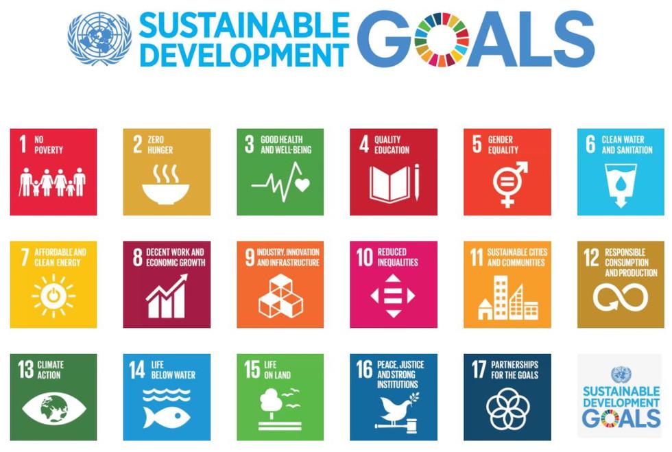 United Nations SDG
