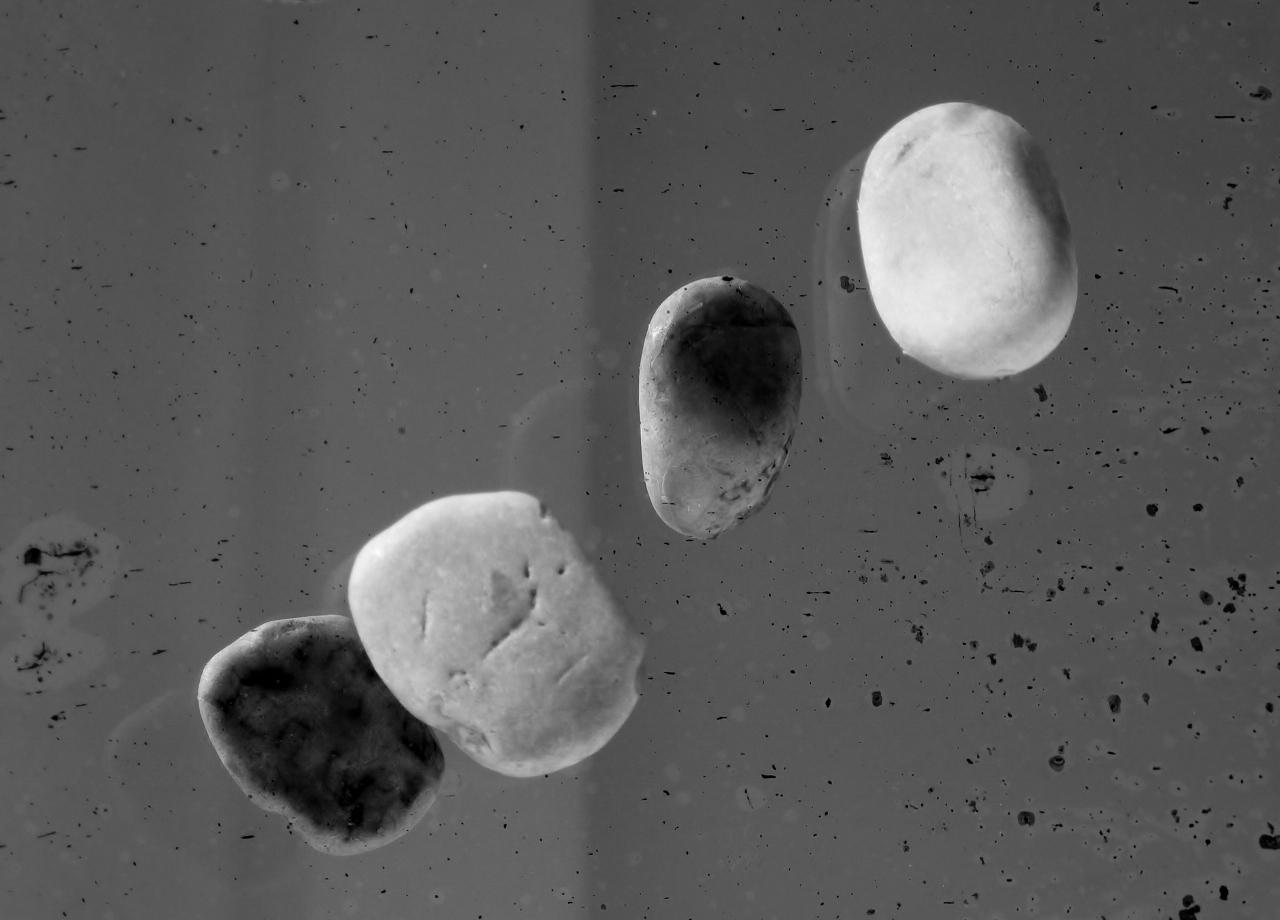 Latentia II - Témoignages de pierres