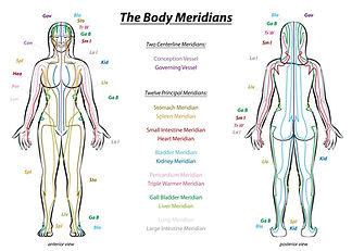 meridians-body-qi-chinese-medicine-TCM-a