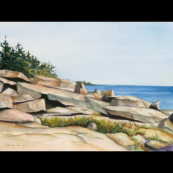 Maine Seaside Serenity   Autumn Huron