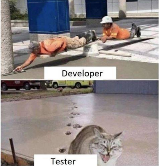 developer-vs-qa.png