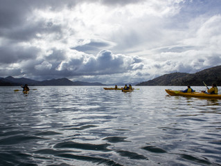 The Breathtaking Beauty of the Marlborough Sounds.