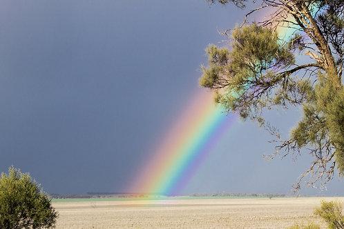 Buckleboo Rainbow