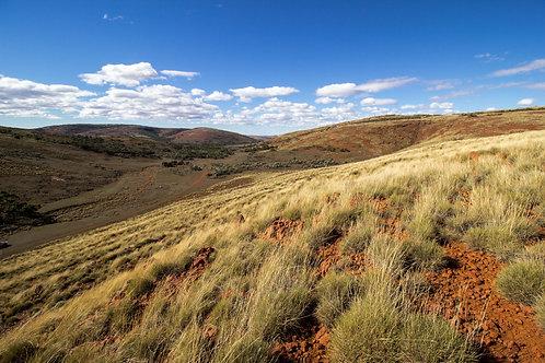 Gawler Ranges 4
