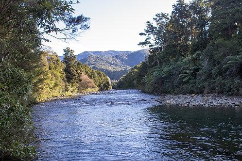 Takaka River 2