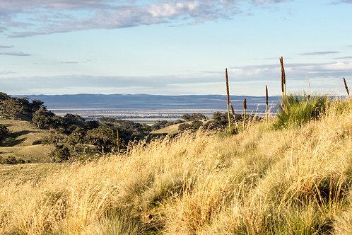 Southern Flinders Horricks Pass 4