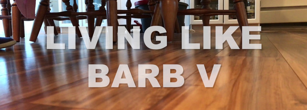 Living Like Barb V - Video Project