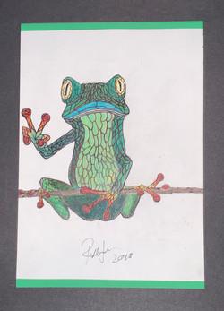 Neon Frog