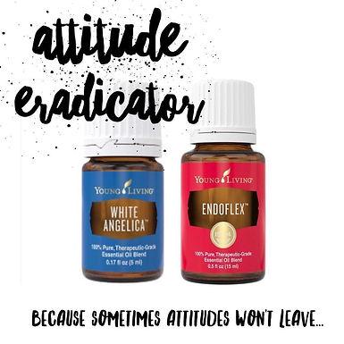 Attitude Eradicator