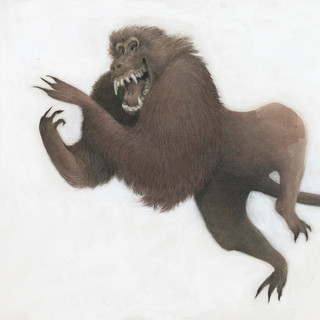 The Laughing Baboon