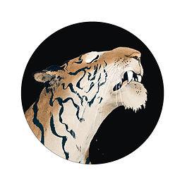 210119_TigerHead.jpg