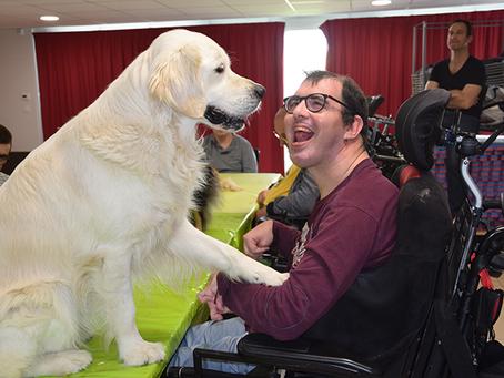 Loi Handicap 2020 : l'agefiph présente les changements