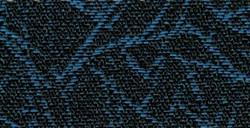 XX-2428.jpg