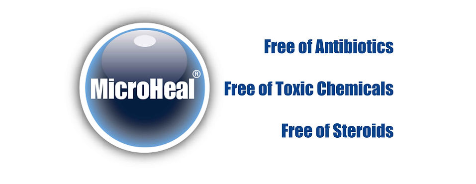 MicroHeal Benefits Banner