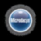 Microdacyn_Logo_1.png