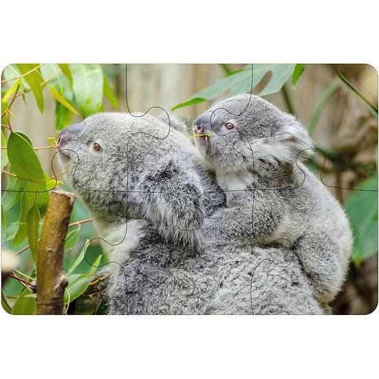 Koalas (6pc Jigsaw Drink Coasters)